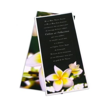 Faire part mariage frangipani