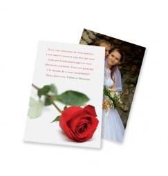 Remerciement classique rose rayon