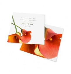 Carton d'invitation arum