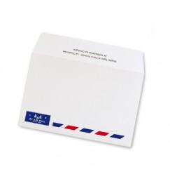 Passport wedding envelope
