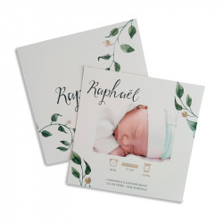 Birth announcement olive leaf