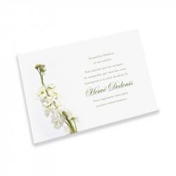 Carte remerciement décès fleurs blanche