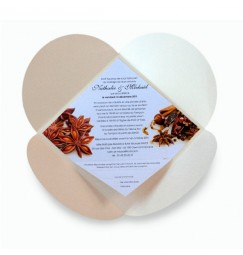 Wedding invitation spice BF